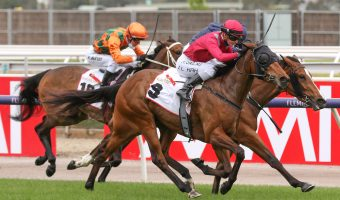 Wakeful Stakes Winner Victoria Quay to Bypass Kennedy Oaks