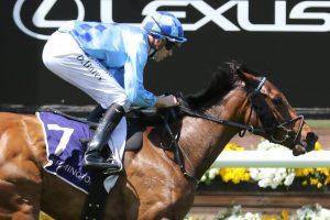 No Restriction Horse Form (Photo: Ultimate Racing Photos) | Races.com.au