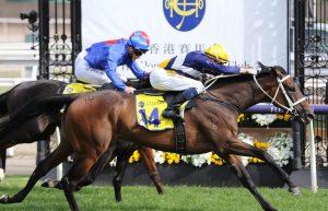 Rich Hips Horse Form (Photo: Ultimate Racing Photos) | Races.com.au