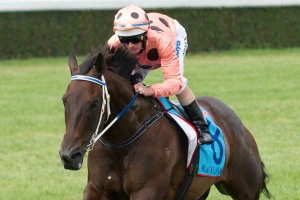 Black Caviar cruises to 18th straight win