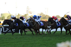 Celts takes out the last at Rosehill for Snowden