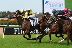 Rain Affair to take on Hay List in T J Smith