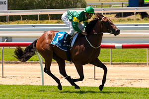 Ryan looking for three Golden Slipper runners