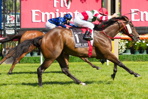 Hay List to bypass the Challenge Stakes on Saturday