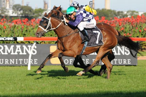 McEvoy Scores Sydney Cup Ride on Permit