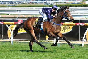 Rodd breathed sigh of relief after Randwick suspension