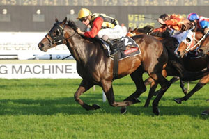 Gollan wins first Group 1 with Temple Of Boom in Galaxy