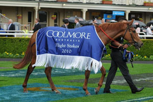 Secret Admirer chasing third win over tough 'Mile'