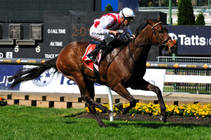 Rekindled Interest Scratched from Doncaster