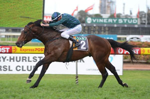 Rain Affair and Foxwedge to clash in the T J Smith