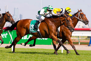Blinkers to help Speediness back to winning form