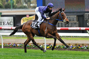 Atlantic Jewel heading to Cox Plate