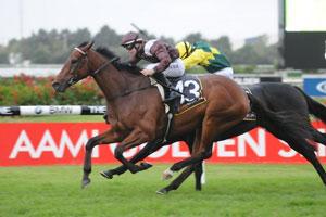 Waterhouse has winning treble on Golden Slipper day
