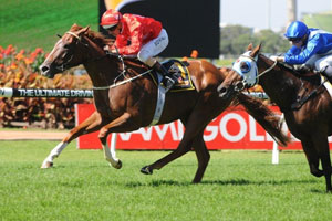 Bowman off to a flying start on Golden Slipper day
