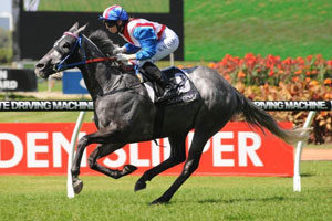 Zaratone chalks up his fourth win at Rosehill