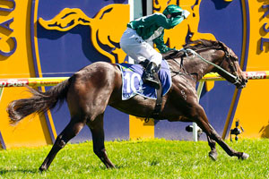 Samaready Draws 11 for Slipper