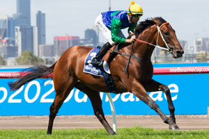 All Too Hard Ruled Out of Slipper