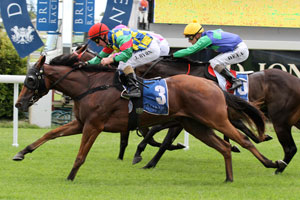 Doubtfilly in Golden Slipper after late entry fee paid
