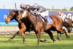 Shez Sinsational heading to Doomben after Hollindale win