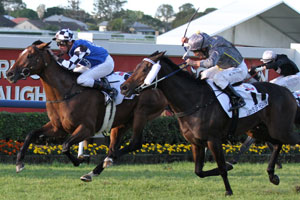 Mawingo gives Freedman first Group 1 win with Doomben Cup