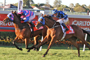 Sea Siren creates history with Doomben 10,000 win