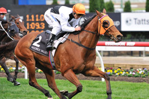 Woorim to take on stable mate in BTC Cup
