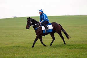 Black Caviar's Rivals Remain Unknown In Diamond Jubilee