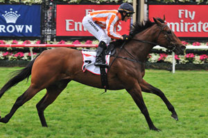 Ortensia Ready for Royal Ascot Success