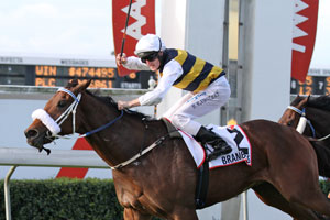 Brambles too strong in the Queensland Derby