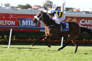 Brambles And Zabeelionaire To Clash In Queensland Derby