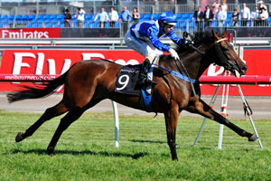 Ironstein Out To Post Brisbane Cup Win