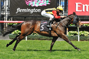 Soft Track to Give Temple Of Boom Stradbroke Advantage