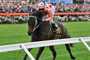 Black Caviar at Peak Fitness for UK Journey