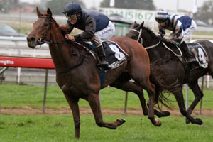 Quintessential continues NZ fillies dominance in Queenland Oaks