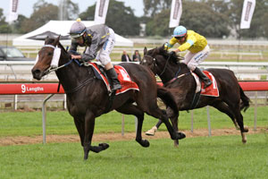 Lights Of Heaven ready for Mawingo after Eagle Farm Cup win
