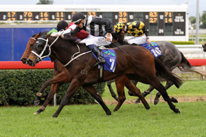 Red Tracer wins again on heavy track in Dane Ripper Stakes