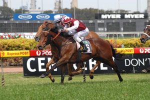 Guineas favourite Mental still in the mix for Stradbroke