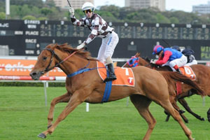 Secret Admirer to target Caulfield Cup
