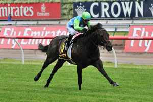 African Pulse on trial for Spring Carnival