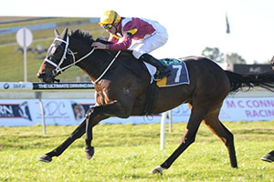 Sour Mash has turned the corner for Waller