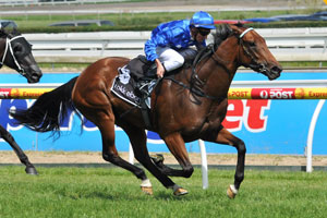 More Joyous on Track for Sheraco Start