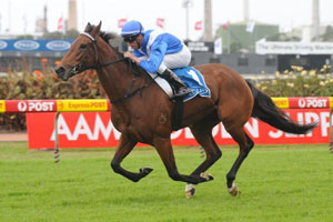 More Waterhouse Stars to Step out Next Week