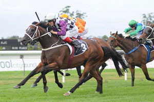 Danleigh to resume at Warwick Farm