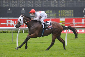 Williams to ride Atomic Force at Moonee Valley