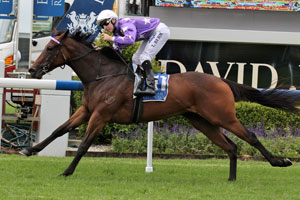 Waterhouse has strong contingent in Thousand Guineas nominations