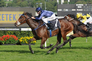 Atlantic Jewel To Miss Spring Racing Carnival