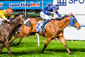 Buffering Scores Tough Moir Stakes Win