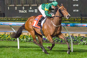 Snitzerland Sizzles in Champagne Stakes