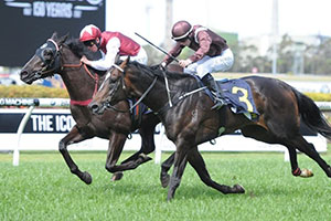 Snowden to decide Proverb's Spring after Rosehill win