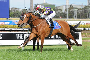 Rolling Pin Survives protest to take out Shannon Stakes